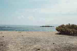 Las Tintoreras isabela island galapagos islands