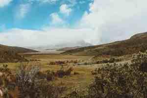 cotopaxi national park hike ecuador
