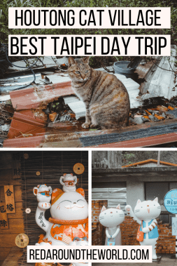 The cat village in Taiwan is a great day trip from Taipei. Houtong cat village is easy to get to & a weird thing to do in Taipei. Visit the Taipei Cat village.