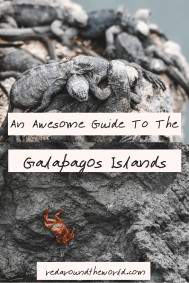 The Galapagos Islands are a major bucket-list destination. Most people visit the Galapagos via cruise, but this will help you visit the Galapagos by land. It's got everything you need to know about getting to the Galapagos, how to geet around the Galapagos, and wildlife in the Galapagos.