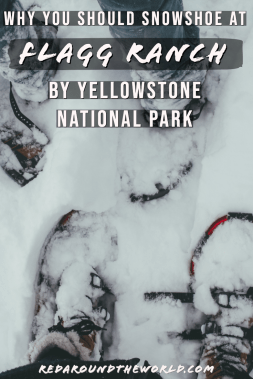 Snowshoeing at Flagg Ranch by Yellowstone in winter is a great way to get outside and away from the crowds closer to Jackson. Winter hiking is great here. Yellowstone in winter | snowshoeing in Yellowstone | jackson hole things to do | jackson hole vacation winter | jackson hole winter