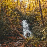 Hike To Three Awesome Waterfalls On The Log Hollow Falls Trail In Brevard, North Carolina