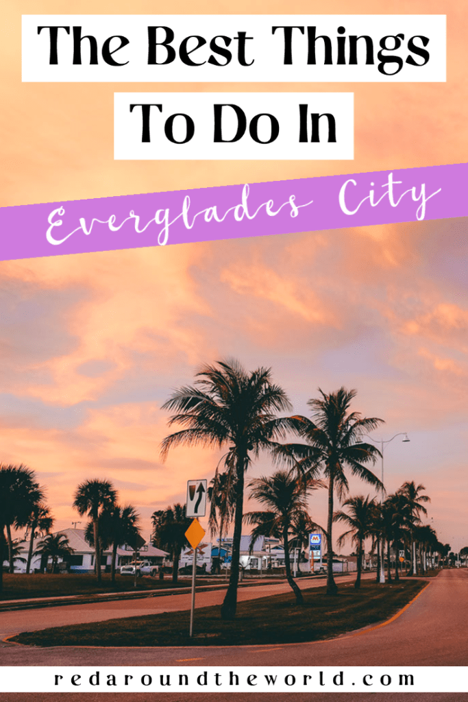 There are so many amazing things to do in Everglades City. Hiking, paddling, biking, birding, and more can all be done in this charming little swamp town. South Florida | everglades city Florida | everglades city things to do | things to do in Everglades city | everglades city hiikes | everglades city hiking | hikes near everglades city | Florida road trip | south Florida road trip | big cypress hikes | big cypress Florida | big cypress things to do