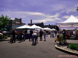 Red Bank Farmers Market 8 of 13