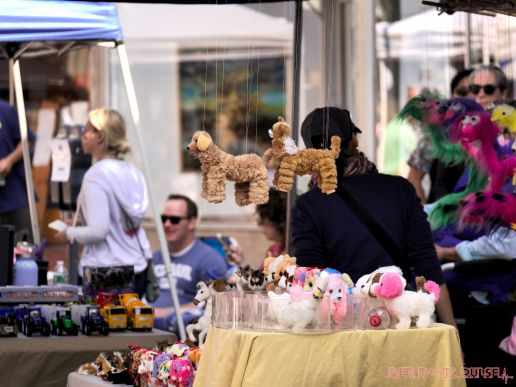 Red Bank Street Fair Fall 2017 29 of 63
