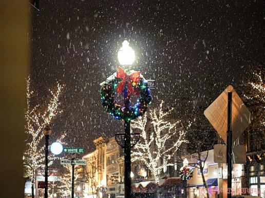 Red Bank Snow Snowfall Holiday Lights 6 of 8