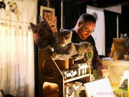 Catsbury Park Cat Convention 5 of 65