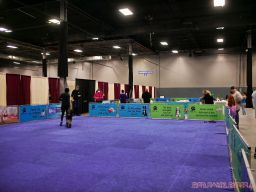Super Pet Expo April 2018 17 of 117