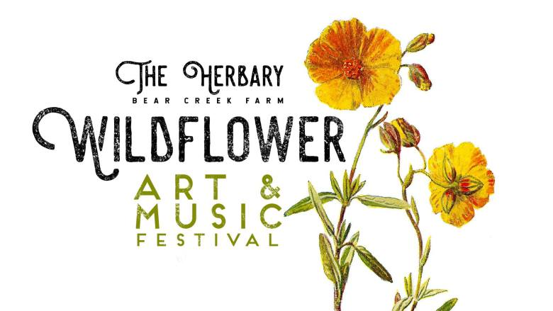 Wildflower Art & Music Festival