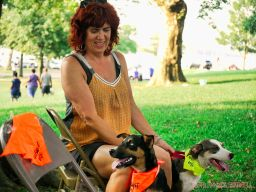 Red Bank Dog Days August 2018 42 of 51