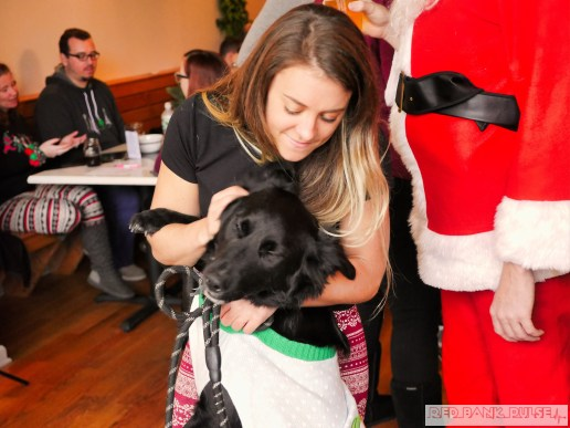 Home Free Animal Rescue with Santa Paws at Bradley Brew Project 34 of 53