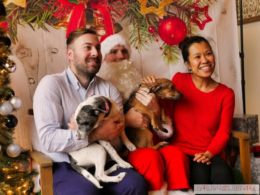 Home Free Animal Rescue with Santa Paws at Bradley Brew Project 48 of 53