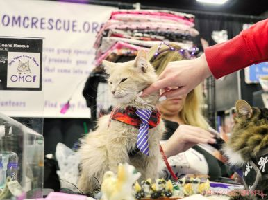 Super Pet Expo 2019 44 of 58