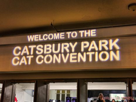 Catsbury Park Cat Convention 2019 51 of 183