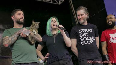 Catsbury Park Cat Convention 2019 76 of 183