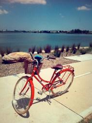 speaker lodged on bike.