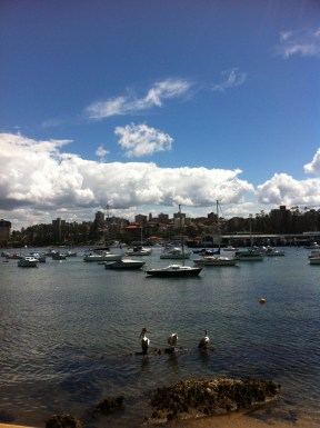 manly shore
