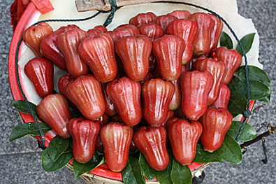 gulangyu-water-apple