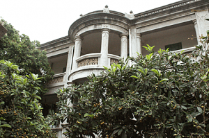Gulangyu Mansion and Loquat Trees