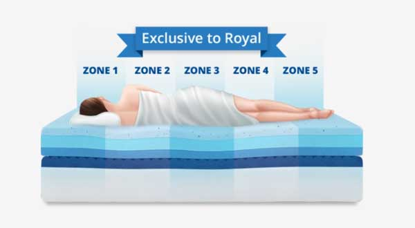 Royal supports 5 zones of your body