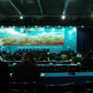 Day one in Poznan: UN doesn't discuss REDD, Conservation International does