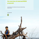 An overview of REDD proposals, and some history...