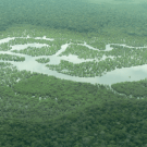 Brazil's National Plan on Climate Change and the Amazon Fund