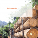 Cogiendo atajos: FERN/FPP report available in Spanish