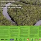 Common Platform on Saving Indonesia's Forests to Protect the Global Climate