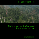 Beyond Carbon: Rights-based Safeguard Principles in Law