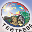 Global Conference on Indigenous Women, Climate Change and REDD Plus in the Philippines