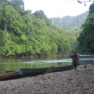 Villagers respond to REDD in West Kalimantan: We need to be recognized as legitimate carbon owners