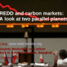 REDD and carbon marekts: A look at two parallel planets