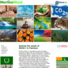 SAFI: Forest Department and Merlins Wood process neither consultative nor transparent
