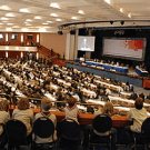 REDD discussions at the UN climate meeting in Bonn