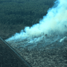 If Indonesia's President is serious about addressing deforestation, why is Tripa still ablaze?