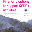 Financing REDD: New report from CIRAD recommends sustained investments