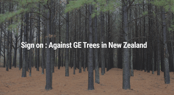 Against GE Trees in New Zealand