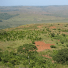Norway's failed REDD experiment in Tanzania