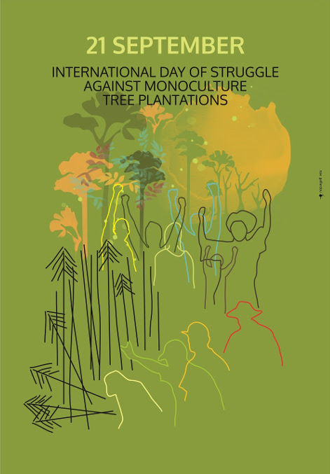 Plantations are not forests!