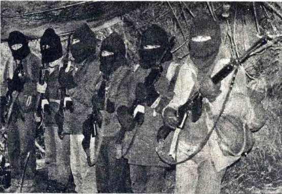 Resultado de imagen para Guerrilla en Neltume