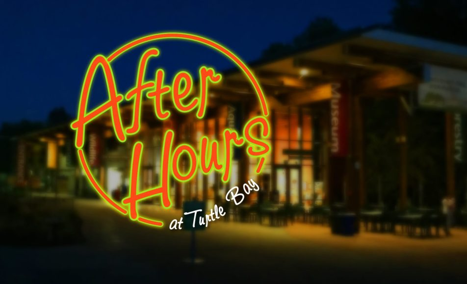 After Hours at the Museum (21+)