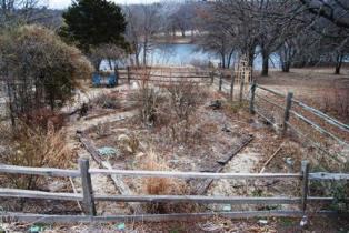 blog-garden1.jpg
