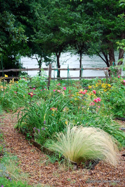 One of the triangular beds with Mexican fountain grass in the foreground