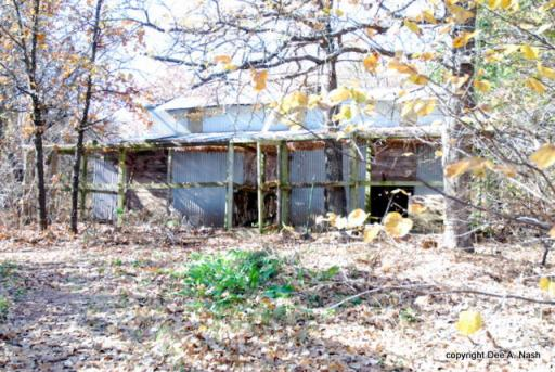 The barn with two chicken runs and coops