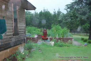 Potager in torrential thunderstorm with raindrops on the camera lens