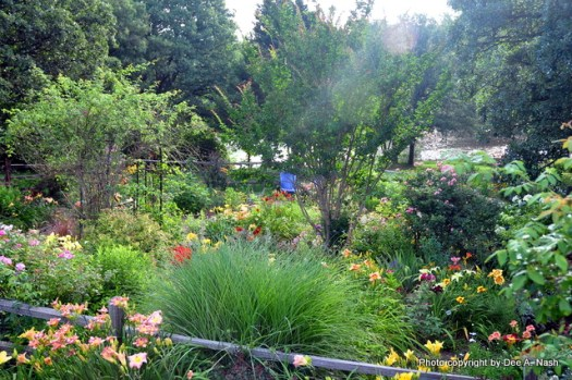I love this shot of the back garden taken from the deck.