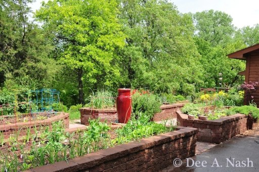 A view of the potager in spring.