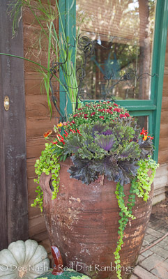 Large Mexican urns planted with kale, a red mum, chartreuse creeping Jenny, 'King Tut' papyrus (leftover from summer) and Delta Fire pansies and decorative peppers.