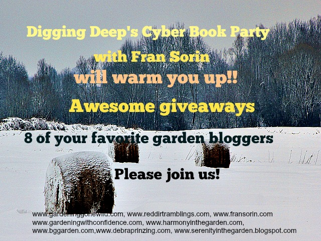 Cyber book party and giveaway for Digging Deep